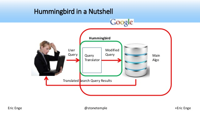 Hummingbird in a Nutshell